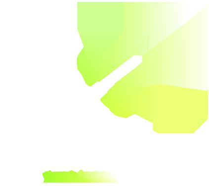 Hidden Signal